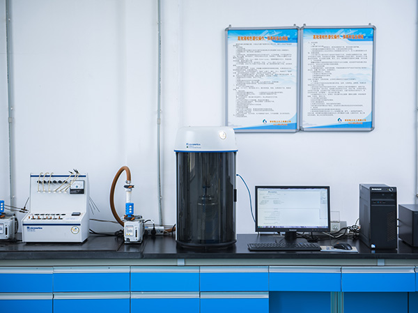 Micromeritics physical adsorption instrument